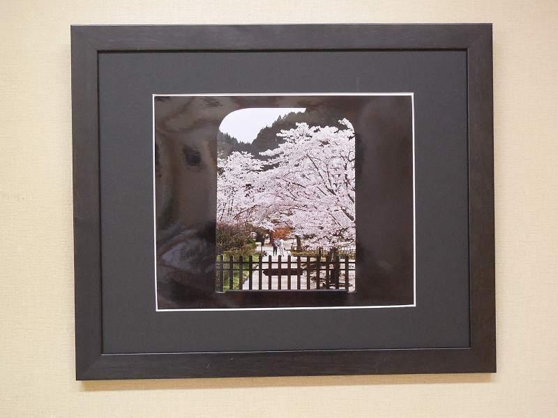 山門の桜 (岡山・閑谷学校)   4月上旬