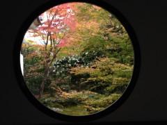京都紅葉2015③