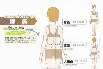 10月のAOI通信は ~ 「腰痛」と「骨密度UP」がテーマです ~